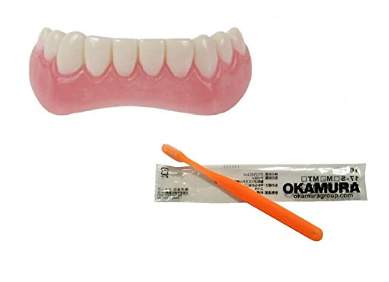 歌う決めますブロックするインスタントスマイル 下歯用 フリーサイズ + OKAMURA 歯科医推奨歯ブラシ セット