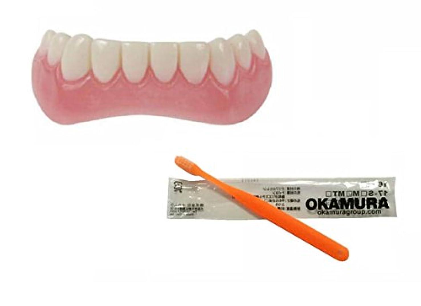 アクティビティ検索露骨なインスタントスマイル 下歯用 フリーサイズ + OKAMURA 歯科医推奨歯ブラシ セット