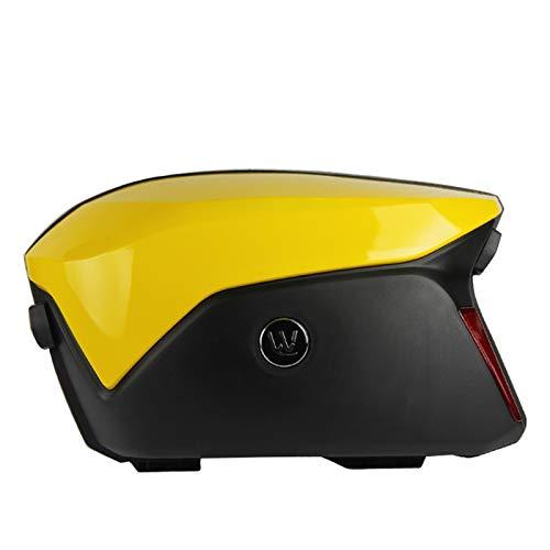V37 2 Piezas Black Motorbike Caja de Cola Motocicleta Caja Lateral ABS Lado de plástico Pannier 21L (Color Name : 1)