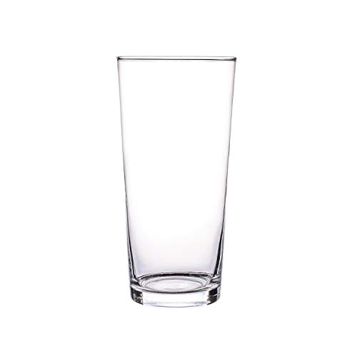 Jarrón de cristal transparente para plantas de agua o