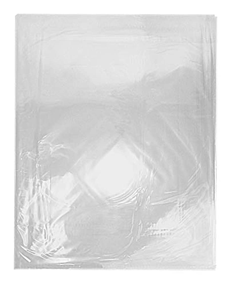 Golden State Art, Pack of 100 16 3/8x20 1/8 Crystal Clear Bag