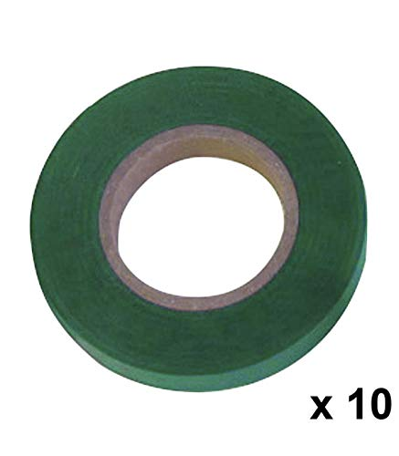 Papillon 8021055 Cinta de Atar, Verde, 11 x 0.15 mm, 26 m, Set de 10 Piezas