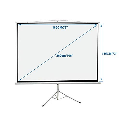 Sotech - Pantalla del Proyector, Pantalla de Proyección, 190 x 190 ...