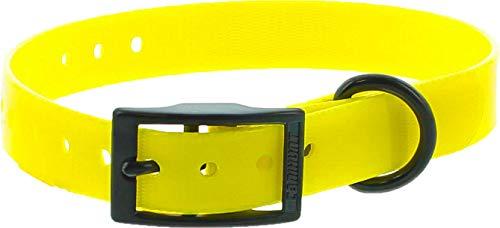 Collar Perro Amarillo Poliuretano 45cm hebilla doble, gravable (ver las detalles)