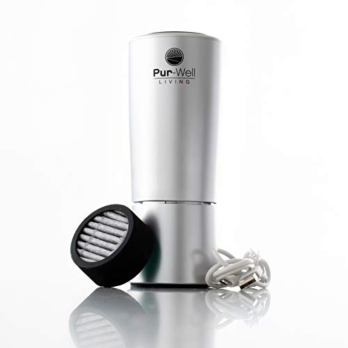 Pur Oxygen Purifier Travel Car Air Purifier with HEPA Charcoal Coconut Filters, Odor Eliminator, Ionizer, Aromatherapy Essential Oil Diffuser, Helps Rid Dust Smell & Smoke (Silver)