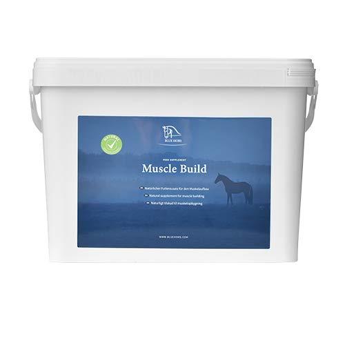 Muscle Build. Effektive Kur aus natürlichen Inhaltsstoffen zum Muskelaufbau Als Proteinquelle dienen ganze Sojabohnen.