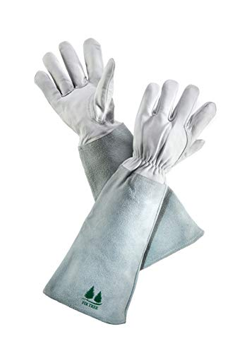 Leather Gardening Gloves By Fir Tree