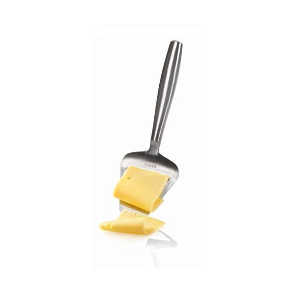 Boska Cortador de queso Copenhagen - Para quesos, cítricos y verduras duras - 220x74x20 mm