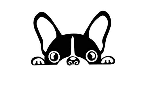 kiskistonite Peeking Dog Vinyl Decal, French Bulldog, Frenchie, Boston Terrier Dog, Laptop Window Sticker, Tumbler Decal, Animal Lover, Animal Rescue, Decal for Wall Bedroom MacBook 5 inches