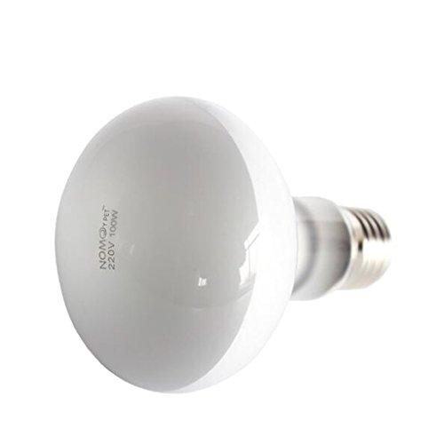 Générique Reptile Lampe du Jour Ampoule Eclairage de Chaleur Lumière Globe Blanc - E27-100w