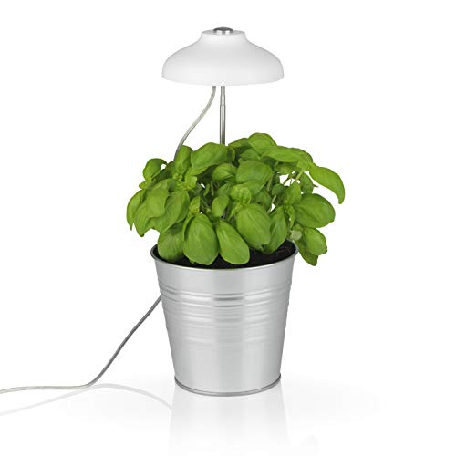 MAXXMEE LED-Pflanzenleuchte mit Teleskopstab | Optimale Lichttemperatur durch weiße & Pinke LEDs für das Pflanzenwachstum | Einfache Befestigung, inkl. 3 Clips zum fixieren | Mit Timerfunktion [weiß]