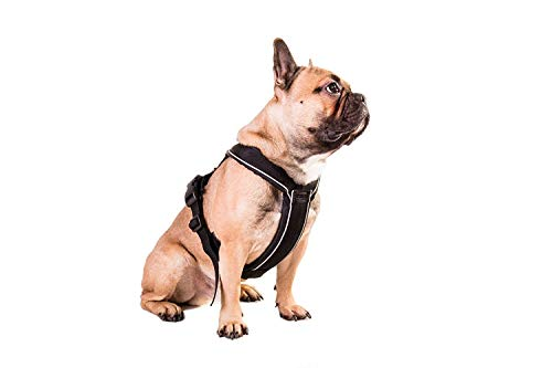 Non-stop dogwear Line Harness, Padded/Adjustable, Size 3, Black, for Dogs, 1 Pack