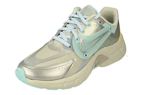 Nike Donne Alphina 5000 Running Trainers DA4297 Sneakers Scarpe (UK 3.5 US 6 EU 36.5, Light Silver Platinum 001)