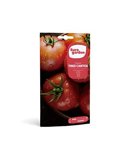 Eurogarden - Semillas Hortícolas. Tomate Tres Cantos