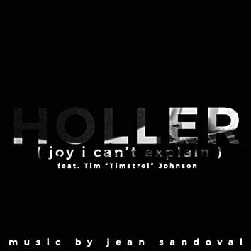 Holler (Joy I Can't Explain) [feat. Tim Johnson]