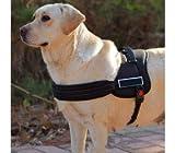 MEDIA WAVE store Adjustable Padded Dog Harness for Education Training - Black, S
