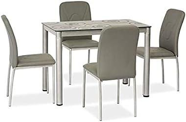 Table Damar Gris, L100xl60xh75 cm