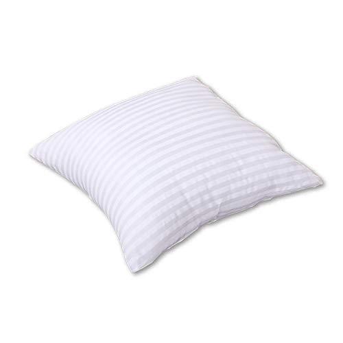 Douceur De Plumes - Cojín de relleno (40 x 40 cm, microfibra), lavable para sofá y almohada de microfibra, relleno de fibra hueca hipoalergénica (40 x 40 cm)
