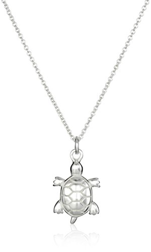 Sterling Silver Turtle Pendant Necklace, 18'