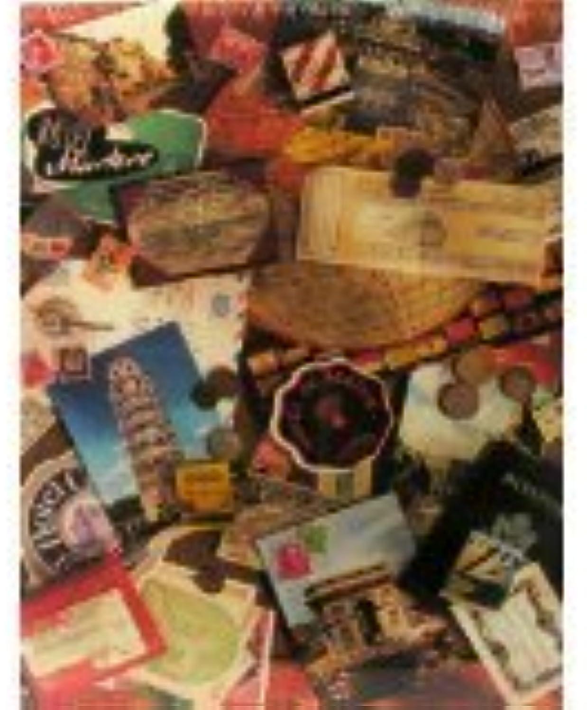 hermoso Springbok 500 Piece Puzzle Puzzle Puzzle Vacation Memories  PZL4527 by Springbok  garantizado