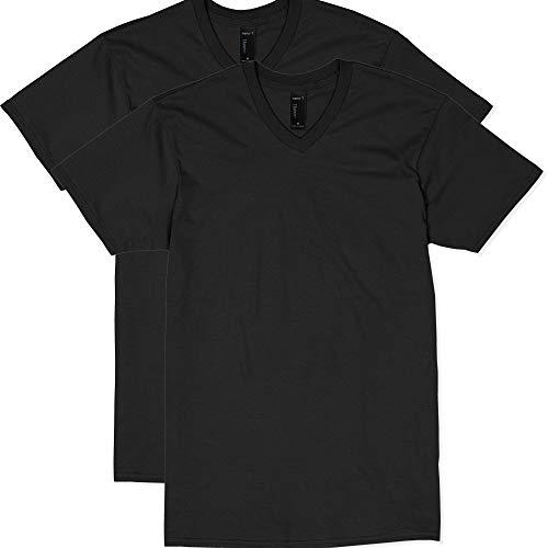 Hanes Men's Nano Premium Cotton V-Neck T-Shirt (Pack of 2), Black, Medium
