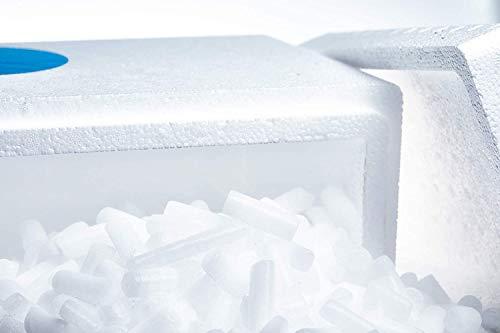 Trockeneis 10kg Nuggets | Styropor-Thermobox | ideal zum Kühlen und für Nebeleffekte | inkl. Next-Day Express Versand Deutschland | Standardversand nach Österreich nur bei Trockeneis.shop