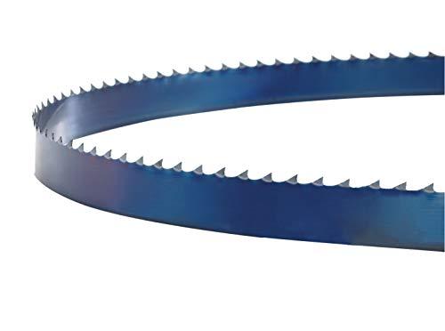 Holzstar Sägeband (12 ZpZ, Länge 1790 mm, für Bandsägen, 60-62 HRC, Qualitätsedelstahl), 5160252