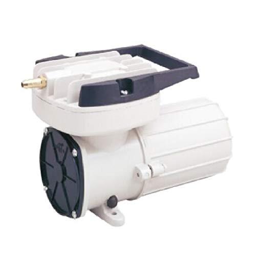 HEALiNK DC 12V 160LPM/Min 2536GPH 120W Aquarium Air Pumps Aquaculture Fish pood Pressure Compressor Aerator