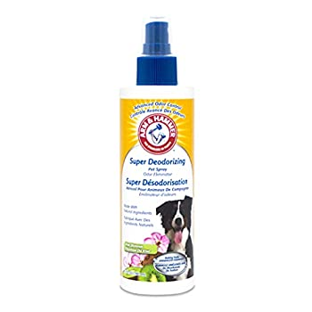 Arm & Hammer For Pets Super Deodorizing Spray for Dogs   Best Odor Eliminating Spray for All Dogs & Puppies   Fresh Kiwi Blossom Scent That Smells Great 6.7 Ounces  FF9367