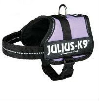 Julius-K9 Powerharness, baby 2, purple
