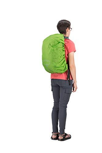 Osprey Packs Hikelite 26 Backpack, Aloe Green, One Size