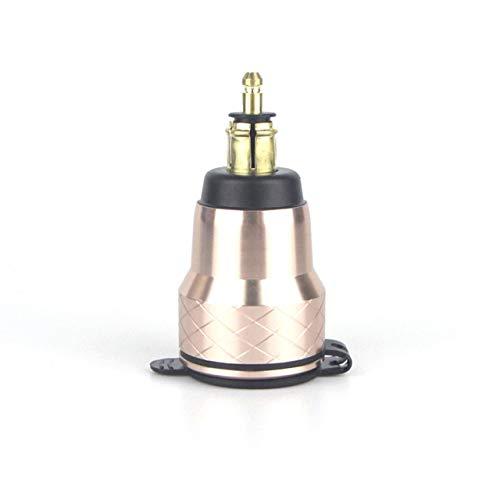 LuckyMAO Abdeckung und Formteile. Fit for BMW F800GS R1250GSA R1200GS QC 3.0 Dual USB wasserdichte Motorrad-Ladegerät Steckdose Zigarettenanzünder-Adapter LED-Anzeige (Color : Golden)