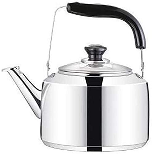 Stainless Steel Whistling Kettle Stove top Kettles for Gas Lightweight Hot Water Kettle Whistling with Folding Handle Fast to Boil,Housewarming Gifts (Size : 5l)