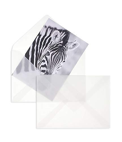 100 Stück, Transparente Briefumschläge, DIN C5, Nassklebung, Spitze Klappe, 90 g/qm Offset, Ohne Fenster, Weiß (Transparent-Weiß), Blanke Briefhüllen