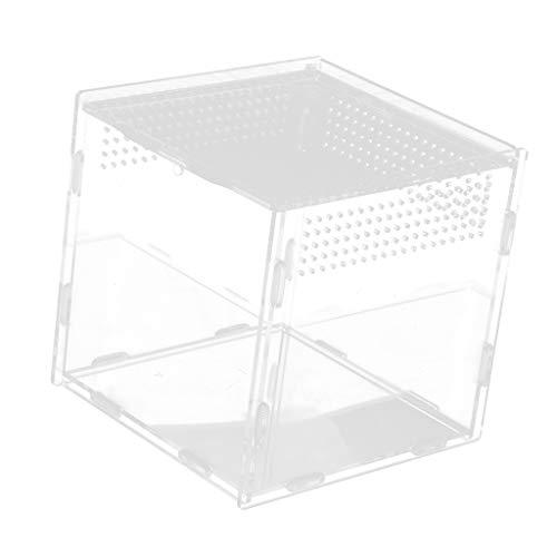 SM SunniMix Terrarium Fütterungsbox Brutbox mit Magnetschloss für Reptilien, Spinnen, Schildkröten, Schlangen - Typ 1