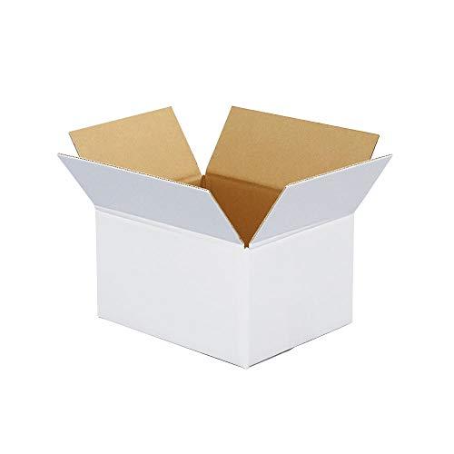 ボックスバンク ダンボール(段ボール箱)60サイズ 白 10枚セット 引越し・収納 FW08-0010-a