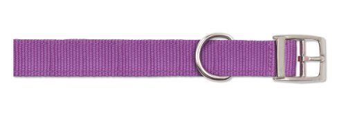 Ancol Viva - Collar Ligero con Hebilla, Color Morado, tamaño 2 para Adaptarse a 26 – 31 cm, Resistente a la Intemperie