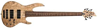 ESP LTD B-208SM 8-String Bass Guitar
