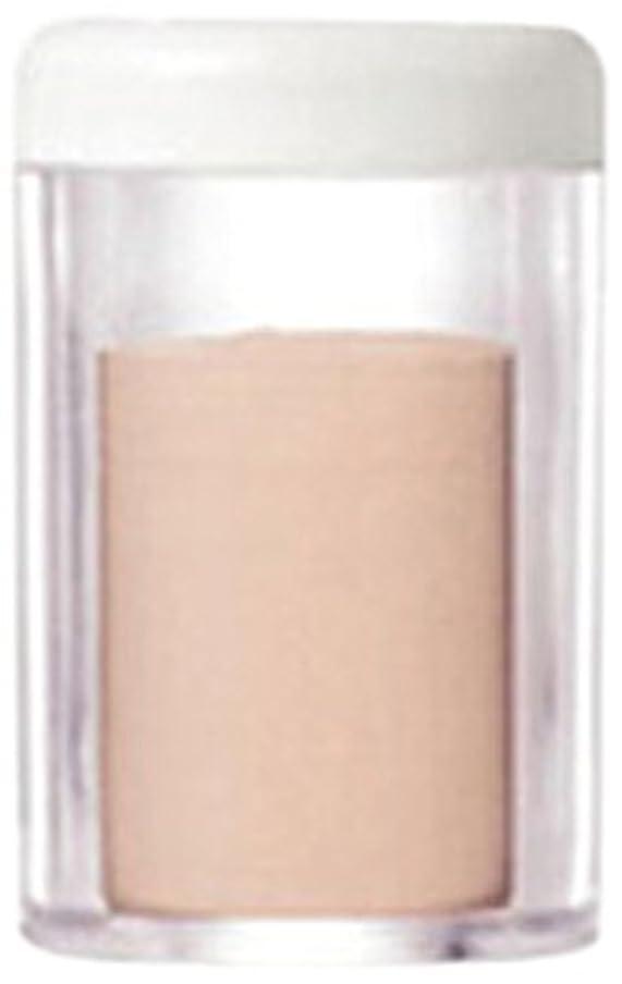 腐敗したドレインパラメータゲマイン UVパウダー レフィル ナチュラルライト