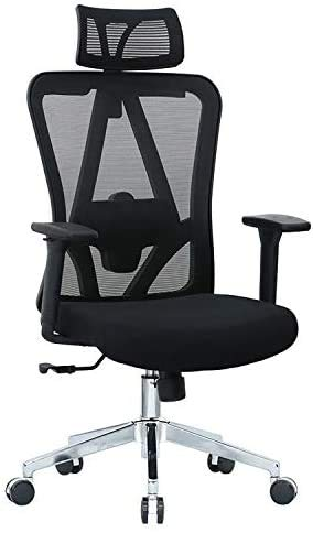 Halter Executive Mesh Office Swivel Chair with Adjustable Headrest, Armrests, Seat Height, and Backrest for Maximum Lumbar Support, Caster Wheels, Cushion Seat, Black