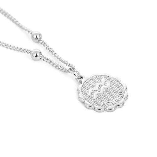 AQING Zwölf Konstellationen Geschnitzte Münzen Halskette Kupfer Anhänger Halskette Damen Schmuck Accessoires, WassermannSilber