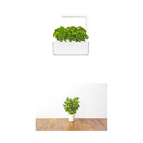 Click & Grow Smart Garden 3 jardinière d'intérieur 30 x 10 x 28 cm Blanc (contient 3 capsules de basilic) + 2 recharges menthe (x3)