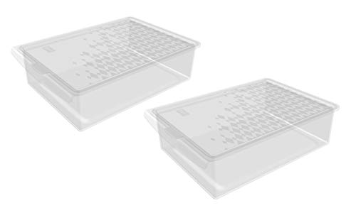BranQ - Home essential Clear Box Käsefach/Kühlfach 2er Set, Kunststoff SAN, Transparent, 18,7x13x0,5cm (LxBxH)