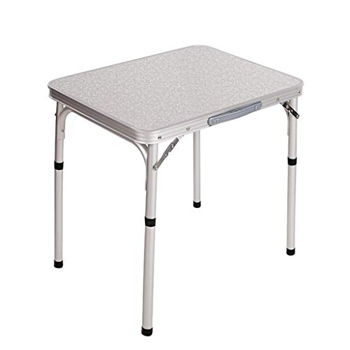 YLYWCG Side Table Portable Foldable Desk,Catering Camping Table,Portable Folding Camping Picnic Table Party Field Kitchen Outdoor Garden Interior Furniture (Color : Flat Silver)