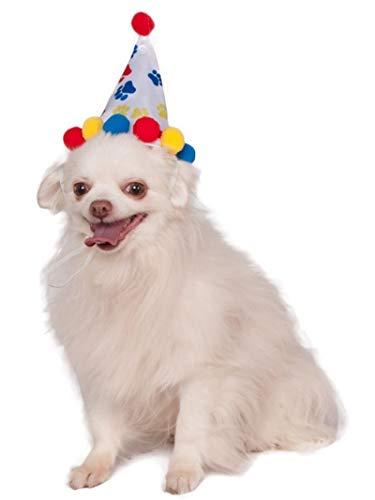Rubis Officielle Pet Costume Chapeau d'anniversaire, Taille S/M