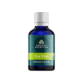 Tea Tree Oil by Ancient Nutrition Organic Essential Oil Therapeutic Grade Creates Soothing Uplifting Ambience 15ml