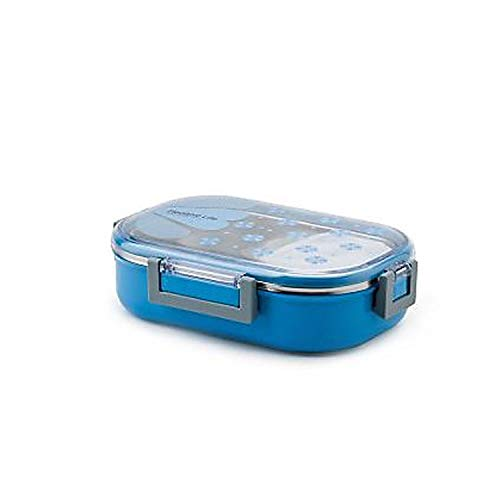 Tedemei Transparent Color Stainless Steel Rectangular Insulated Lunch Box with Spoon and Mini Salad Box (Blue, Rectangular)