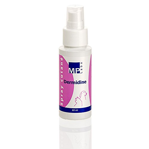 MP LABO dermidine antiséptico para Gato y Perro – Spray de 60 ML