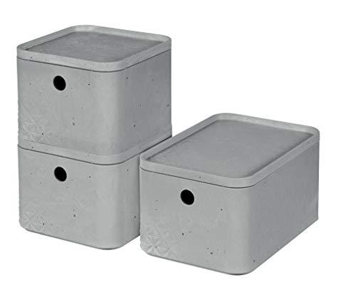 BETON Box mit Deckel, 3er-Set (2 x XS + 1 x S)
