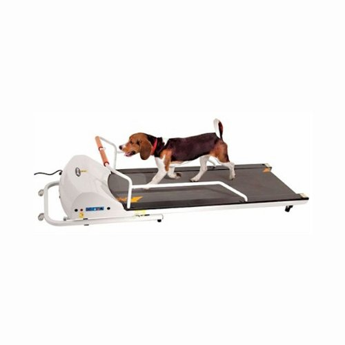 GoPet Treadmill Review